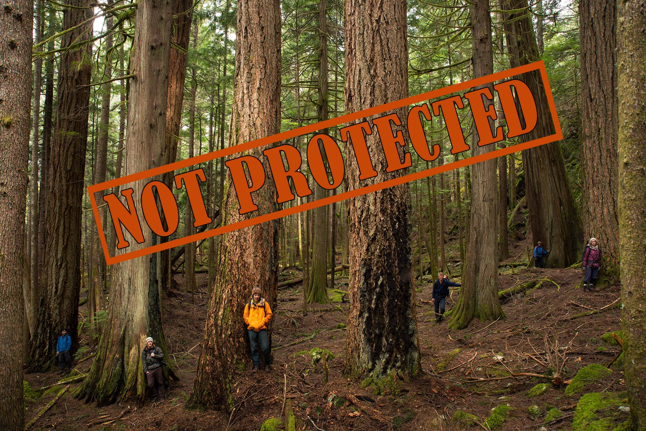 notprotected2